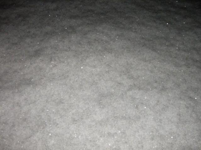 大雪 006
