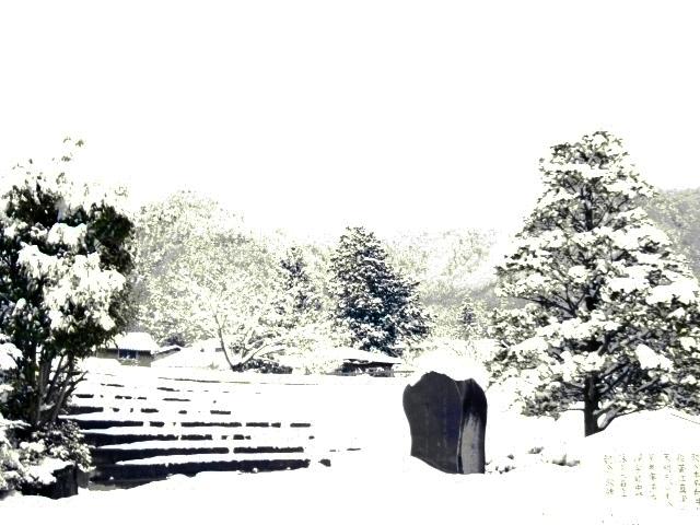 大雪 008