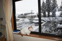 大雪 042