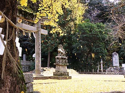 '10岩部神社イチョウ3