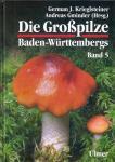 Die_Grosspilze_Baden_5.jpg