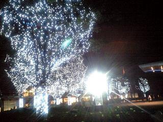六本木ヒルズ(夜景2)