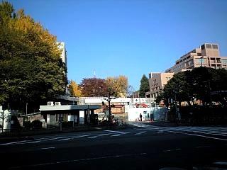 散歩風景(慶応南門)