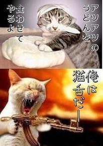 私も猫舌にゃ~