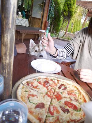 piza超~美味そうです