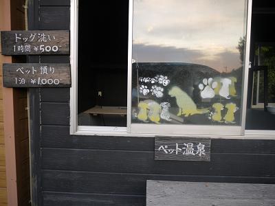 犬の温泉3