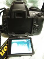 PB250066.jpg