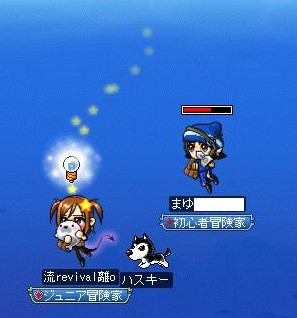 Maple091206_231000.jpg