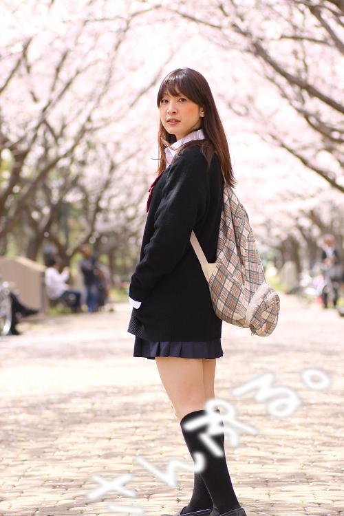 sakurahadu002-2011.jpg