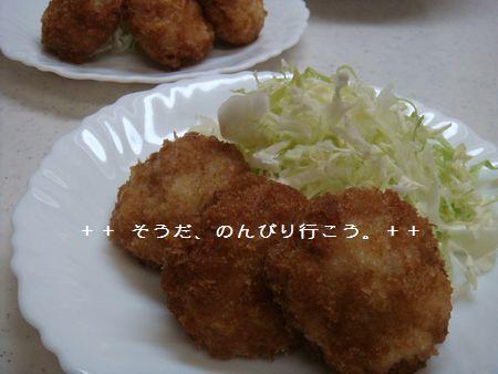 DSC02011-1.jpg