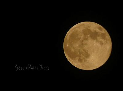 10月12日の満月