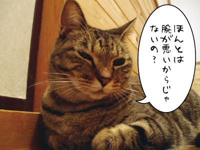 090930-2maruko.jpg
