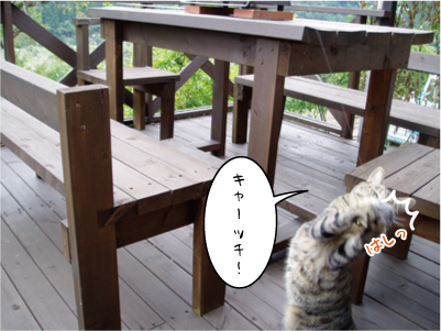 091002-3maruko.jpg