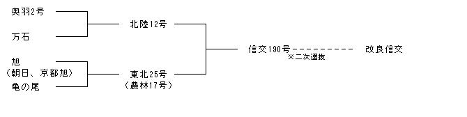 改良信交系統図