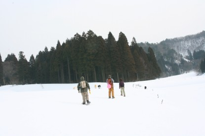 20110205p.jpg