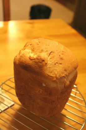 今朝のパンとイオ