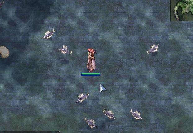 大量のお魚さん