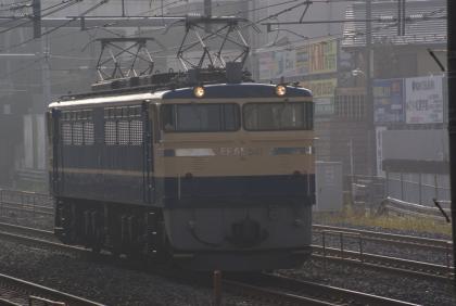 EF65501(高)