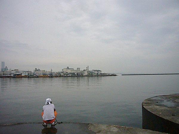P1140063.jpg