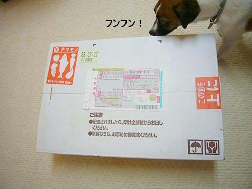 P1140480.jpg