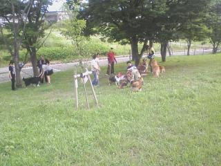 2010-07-04_0013.jpg