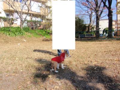 118_convert_20100321040436.jpg