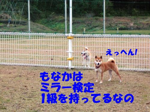 CIMG0274.jpg