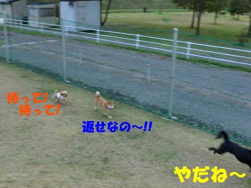 CIMG0289.jpg