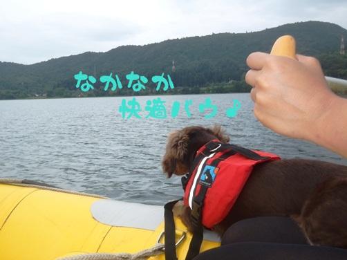 2011081006.jpg