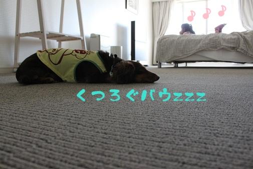 2011082603.jpg