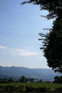 200909172.jpg