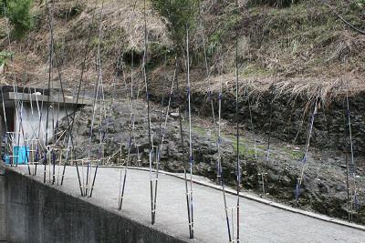 200910154.jpg