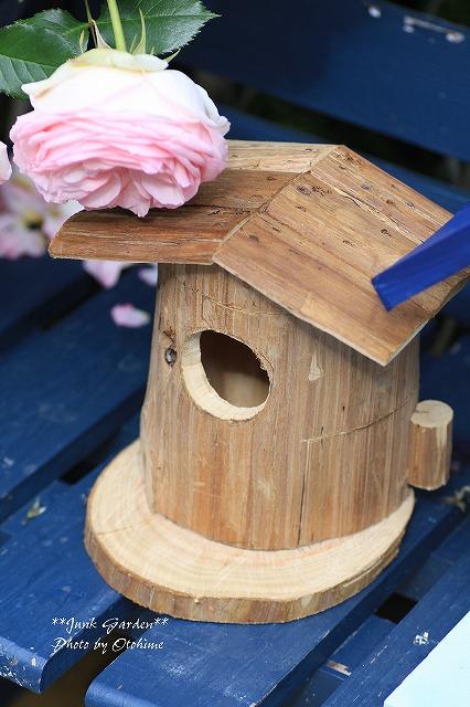 IMG_9734鳥さんの家^^