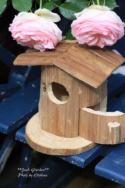 IMG_9742鳥さんの家