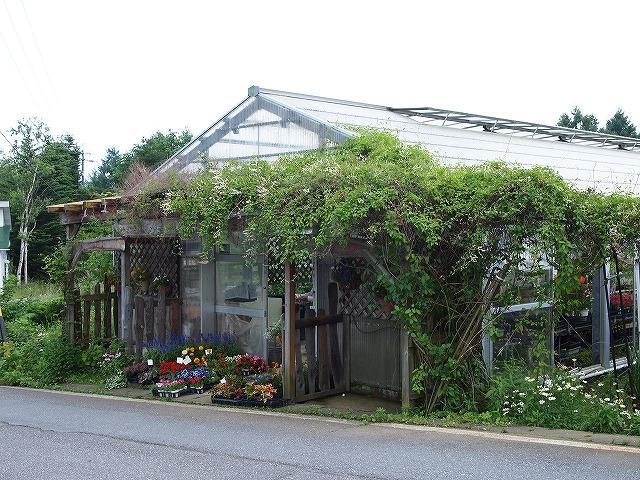 091おぎはら植物園