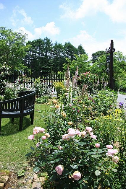 IMG_5045バラのお庭のペンションさん