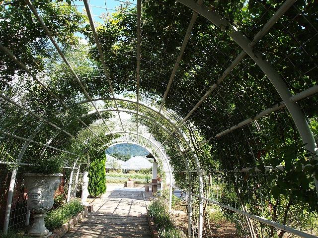 070ハーブ庭園