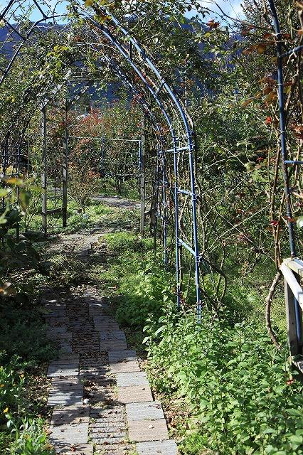 IMG_8728安曇野バラのお庭