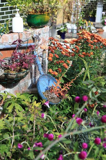 IMG_8742安曇野バラのお庭