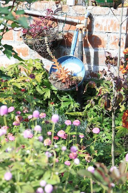 IMG_8746安曇野バラのお庭
