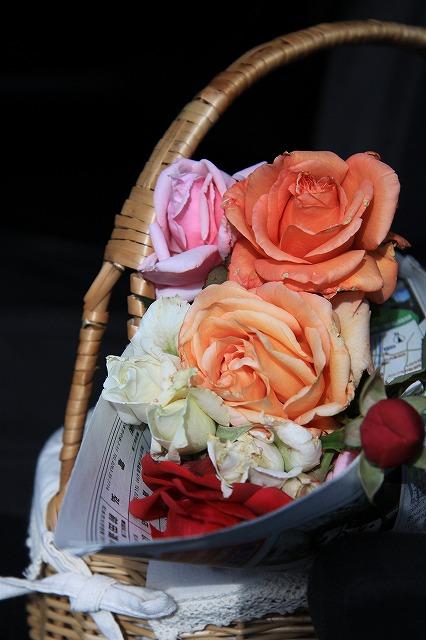 IMG_8755安曇野バラのお庭