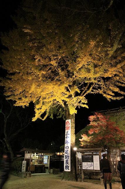 IMG_9268香嵐渓