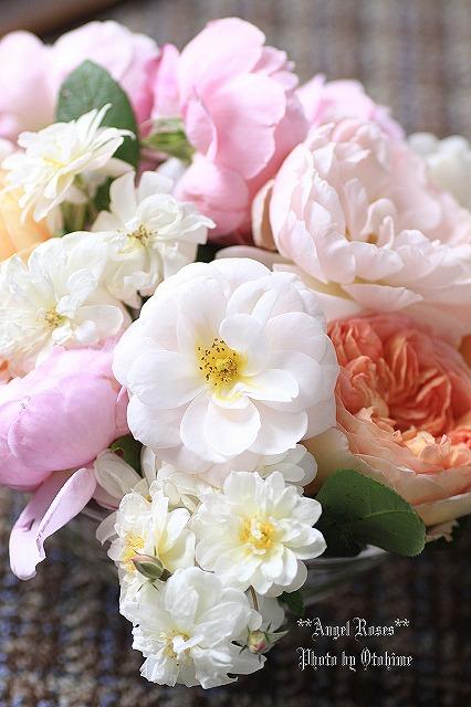 IMG_9733乙姫ガーデンのバラ達