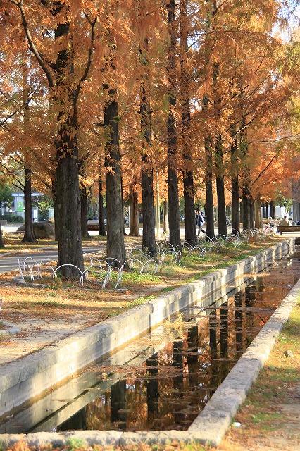 IMG_0235鶴見緑地