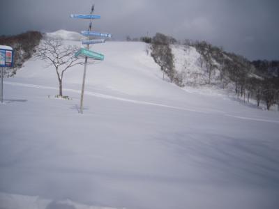 hirafu1-3.jpg