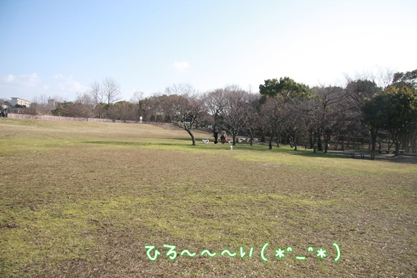 052_20100129225427.jpg