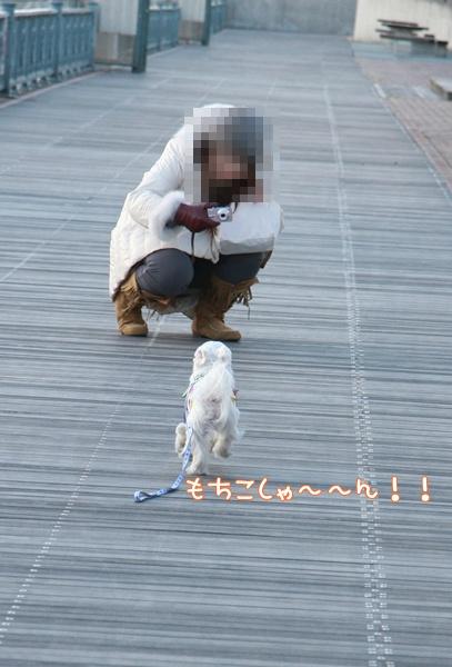 198_20091220213601.jpg