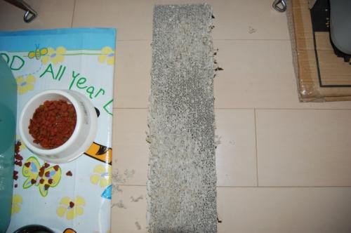 20091103_ガリガリする板