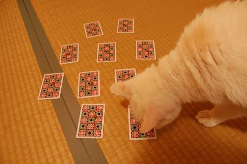 20101109_08十兵衛さん01