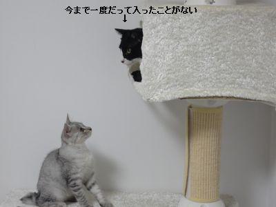 2011_0730_144721-DSC00840.jpg
